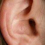 ear-closeup